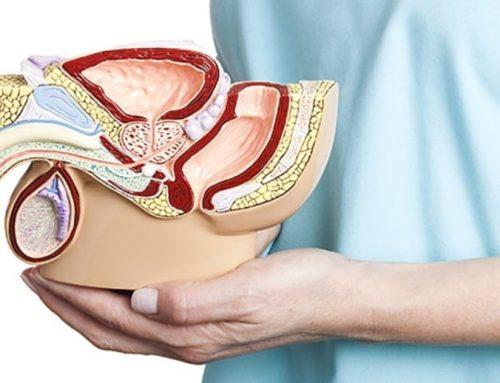 Jak mohou Kegelovy cviky pomoc při předčasné ejakulací a erektilní dysfunkcí